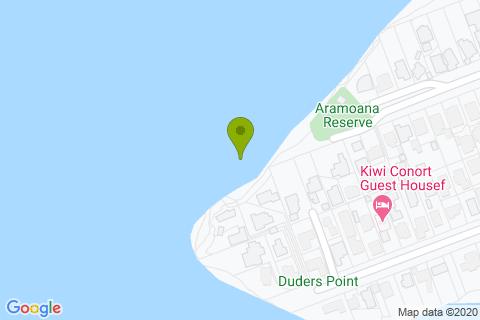 Aramoana Reserve