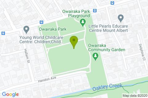 Owairaka  Park