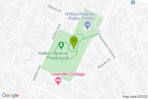 Holliss Reserve Playground