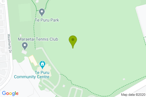 Te Puru Park Playground