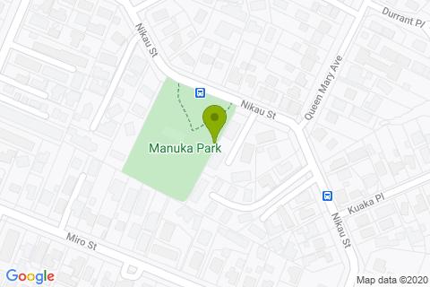 Manuka Park Skate Park
